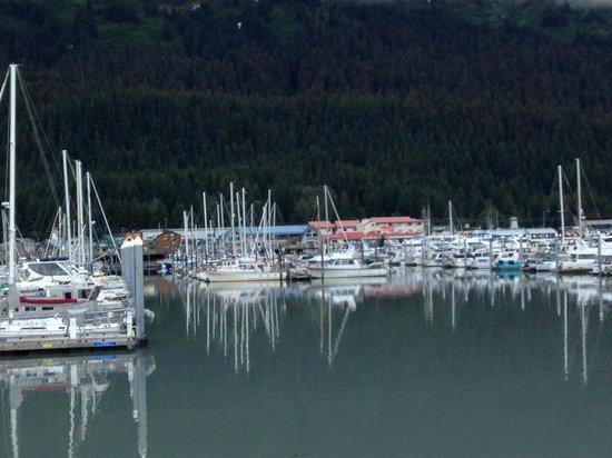Harbor 360 Hotel: Harbor view