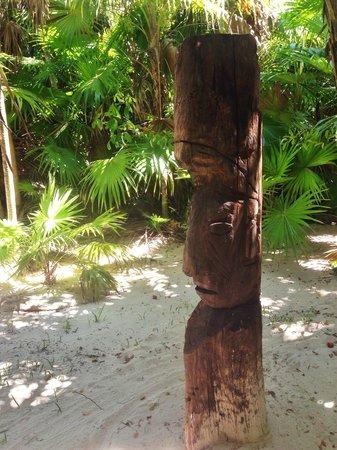 Playa Esperanza: ...