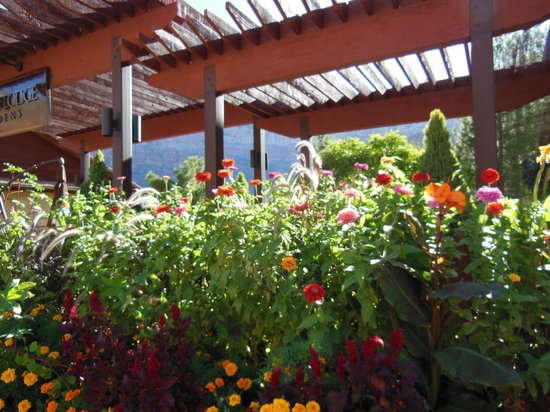 Cliffrose Lodge & Gardens : Beautiful gardens all around!