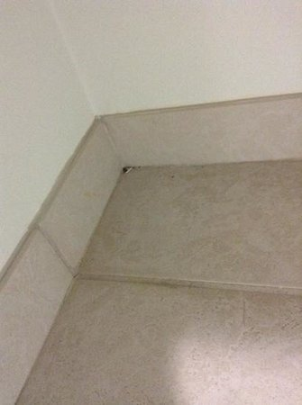 Sleep Inn & Suites Harrisonburg: bathroom floor was Never cleaned (corner)