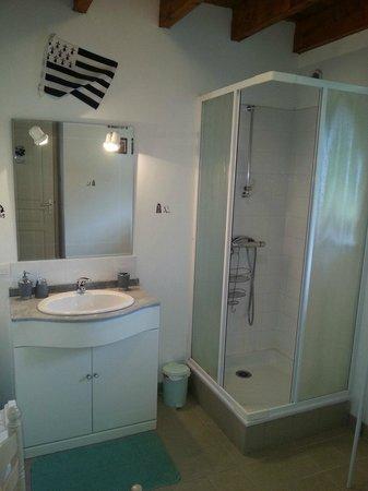 Chambres D'Hotes Les Chesnais : salle de bains