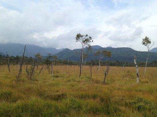 Senjogahara Field: 秋は始まってます