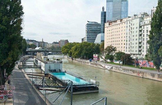 Vienna City Tours: из окна автобуса