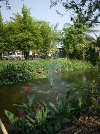 Nim Chiangmai Airport Hotel: территория отеля