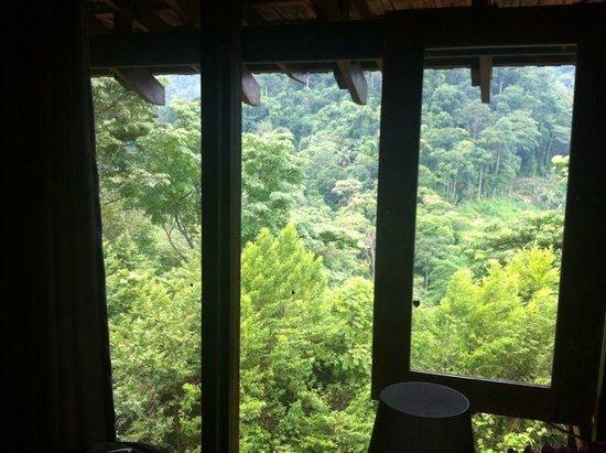 The Shorea: View from 2nd Floor @ Villa Shorea