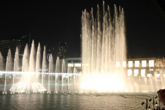 Mango Tree: Excellent fountain show