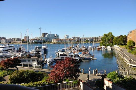 Coast Victoria Hotel & Marina by APA : il porto