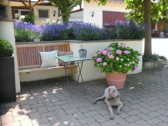 Gau-Odernheim, Deutschland: romantische Sitzplätze im Gutshof