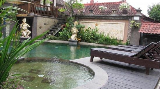 Kunang-Kunang Guesthouse: swimming pool area