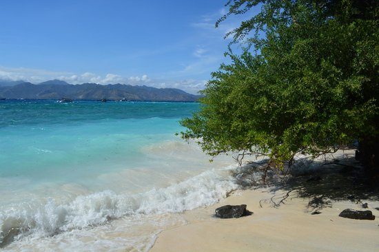Tir Na Nóg Gili Trawangan Accommodation: Пляж около ресторанчика