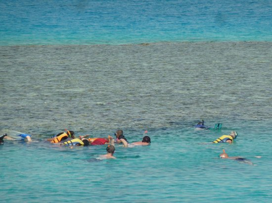 Red sea snorkelling