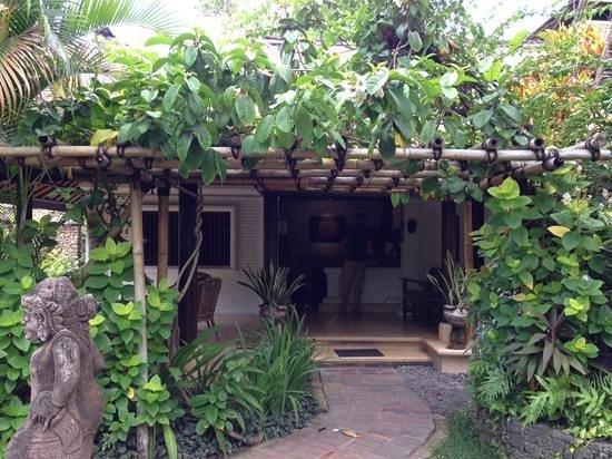 Poppies Bali : de receptie