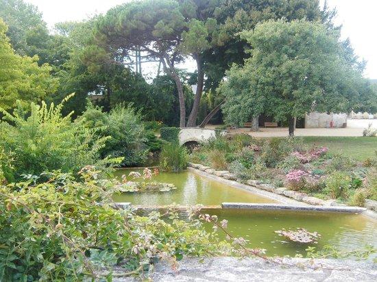 Belambra Clubs - Le Domaine du Golf: Parc avec des roses, je ne sais plus le nom... Très joli!