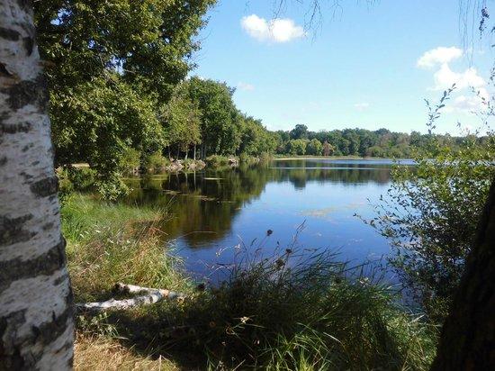 Belambra Clubs - Le Domaine du Golf : Etang Forêt de Joreau