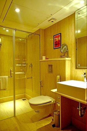 The Theme, Jaipur: Executive Bathroom
