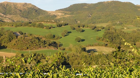 Agriturismo Ca Serrantonio : the surroundings