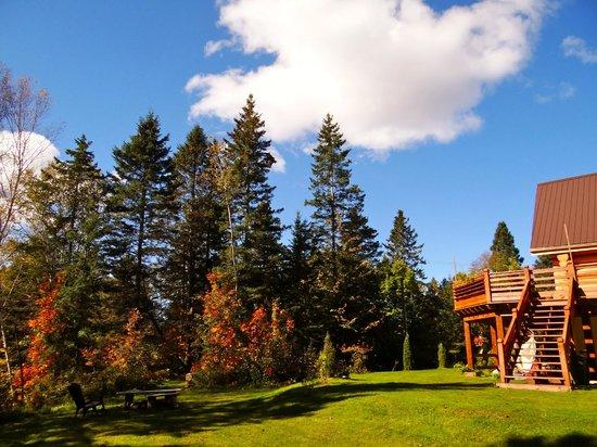 Le Domaine du Lac Saint Charles: Le jardin
