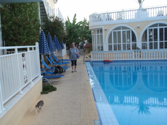 Kali Pigi Hotel: Widok na basen hotelowy