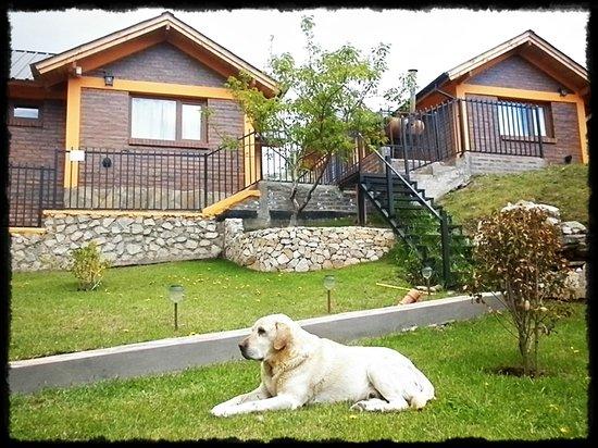 Cabanas Bosque Andino: Rampa de acceso a la Recepción. Tito nuestra mascota.