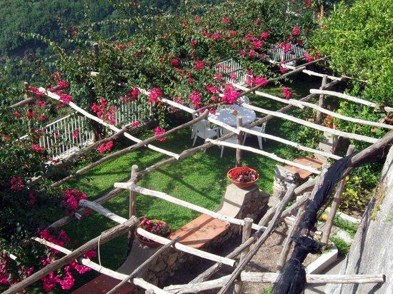 giardino delle bouganville - Picture of Le Terrazze di Cristina ...