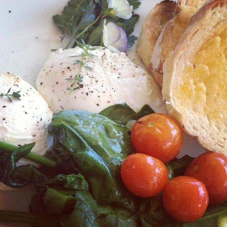 Noosa Valley Manor B&B Retreat : best eggs for breakfast