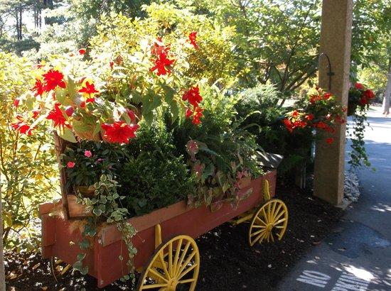 Woodloch Pines Resort: Lovely Flowers Everywhere!
