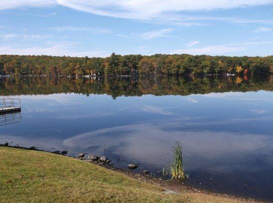 Woodloch Pines Resort: Beautiful trees reflecting in the lake