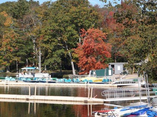 Woodloch Pines Resort : By the Lake