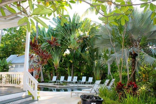 The Paradise Inn: A tropical paradise by the pool