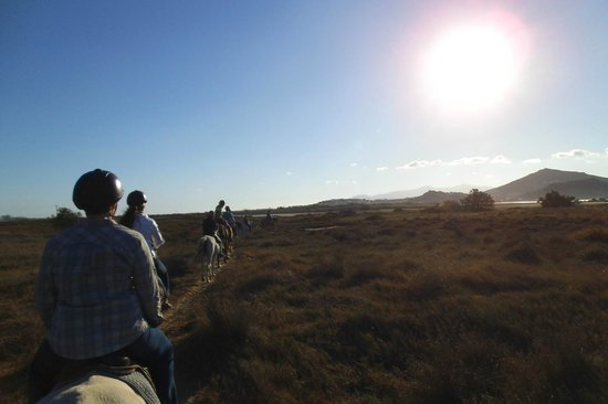 Naxos Horse Riding Club