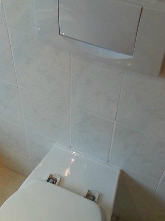 Tarragona Lodge: Broken toilet seat hinges - is this four star?