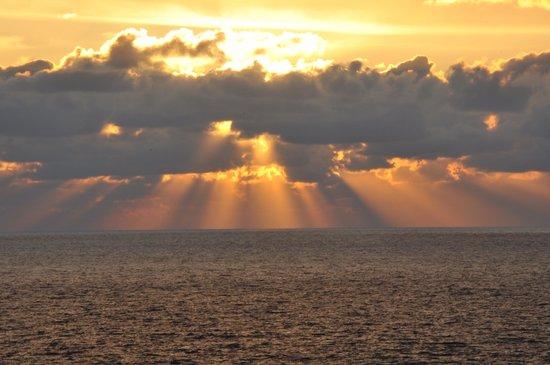 Yukaitei Miyajima: 夕陽が素晴らしい!