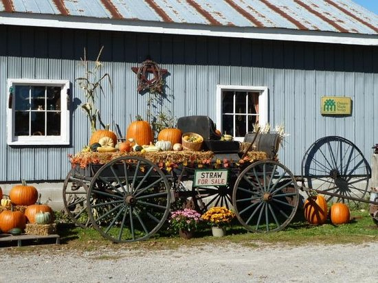 Welcome toHarvest Days at Horseless Carriage Museum
