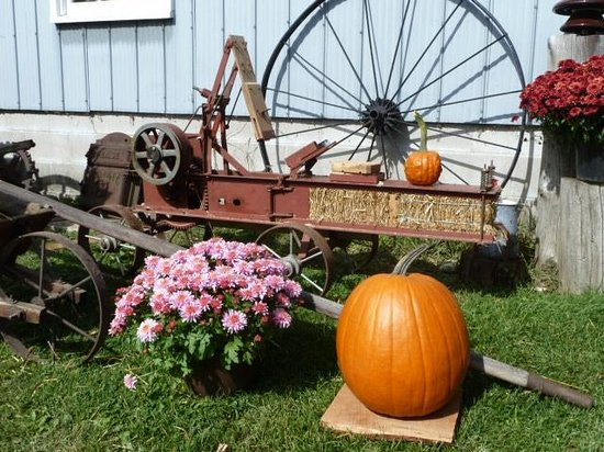 Horseless Carriage Museum : Working baler for making miniature bales of straw