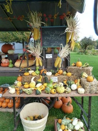 Horseless Carriage Museum : Harvest bounty