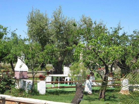Masseria Cesarina: Il giardino