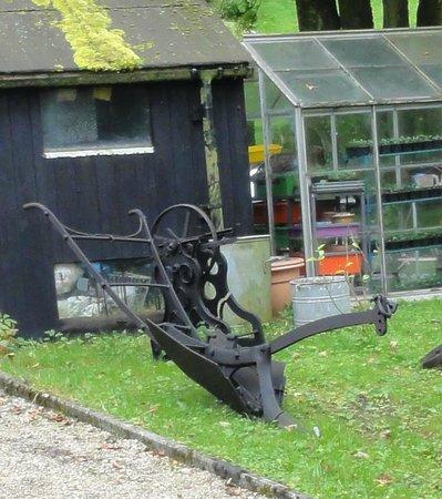 Smithy Fold: part of the garden