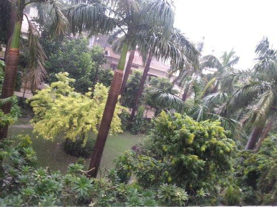 Hotel Buddha: rain pic