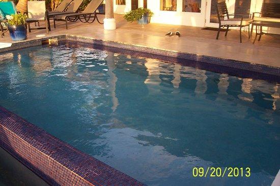 Casa Miradores Infinity Pool