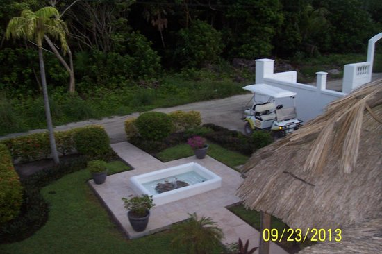 View of front yard from Rooftop