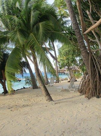 Maitai Polynesia Bora Bora: plage