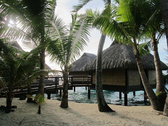 Maitai Polynesia Bora Bora: bungalow