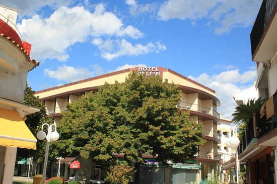 Hotel Delfin : hotel exterior
