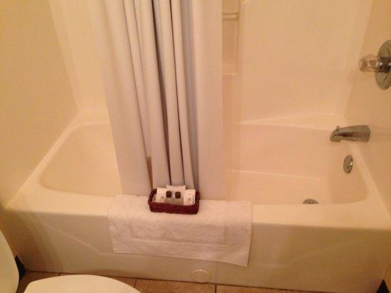 CandleLight Inn: Our room bathroom