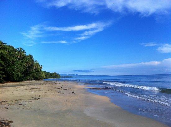 cabinas punta uva: playa punta uva