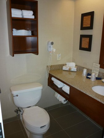 Comfort Inn & Suites North Conway : Good bathroom