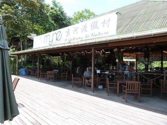 Myne Resort: The balcony and main area