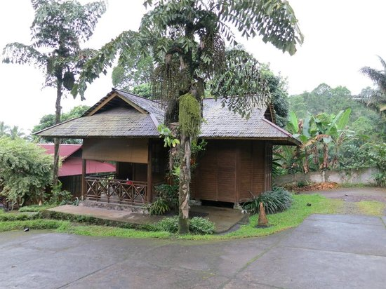 Highland Resort & Nature Tours : Deluxe room