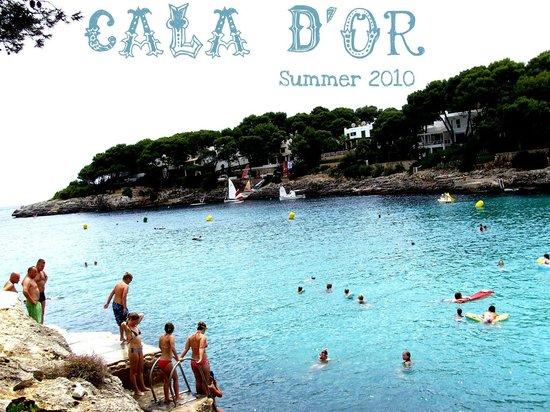 Aparthotel Ferrera Blanca: wieu of the sea