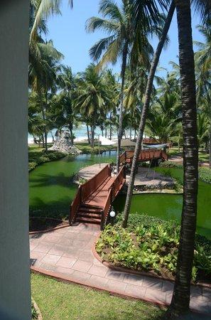 Diani Reef Beach Resort & Spa: Zimmerausblck